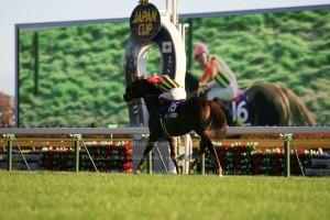 08ジャパンカップ5