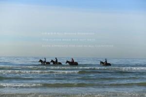 海岸調教1