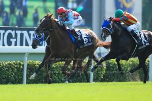 2012香港ヴァーズ1