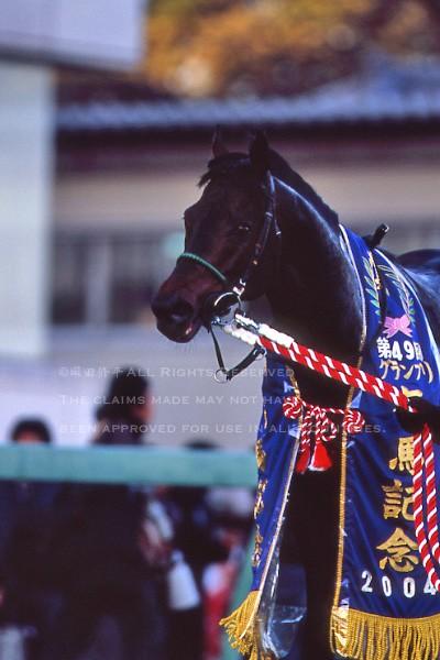 04有馬記念5