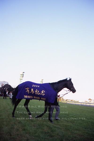 04有馬記念7