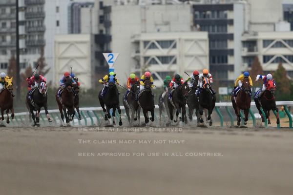 15チャンピオンズC1