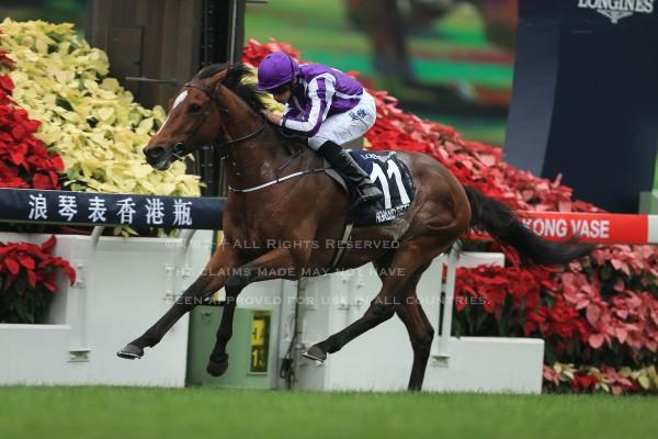 15香港ヴァーズ3
