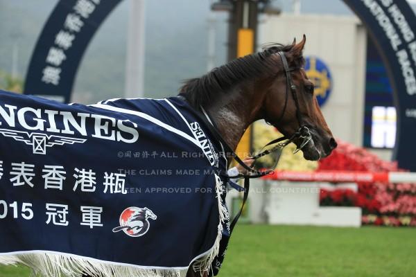 15香港ヴァーズ10