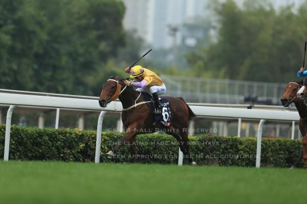 15香港スプリント3