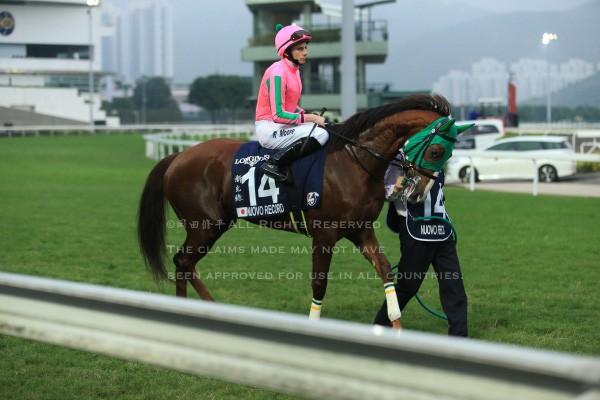 15香港カップ2