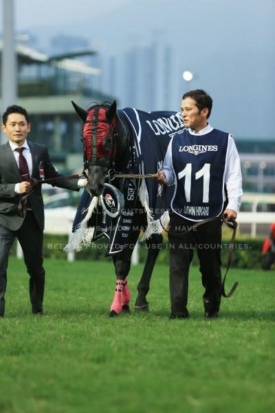 15香港カップ25