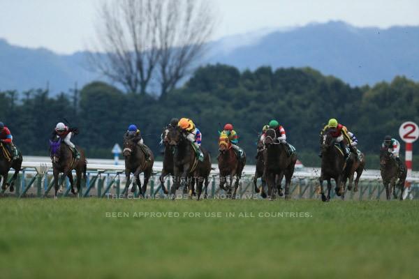 16京都牝馬S1