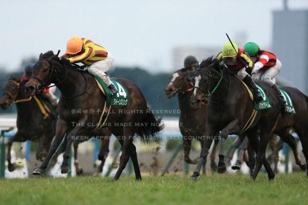 16京都牝馬S2