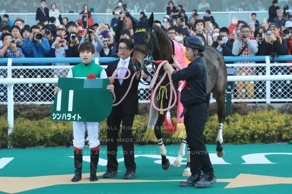 16チューリップ賞7