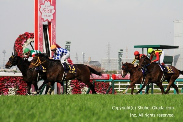 16桜花賞05