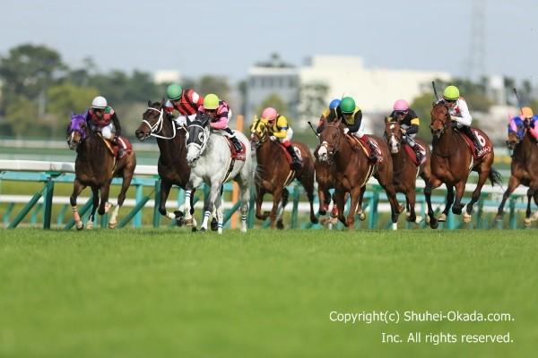 16阪神牝馬S1