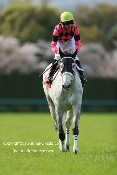 16阪神牝馬S4