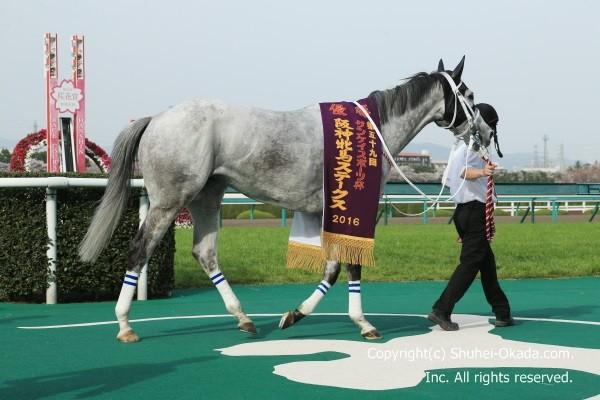 16阪神牝馬S6