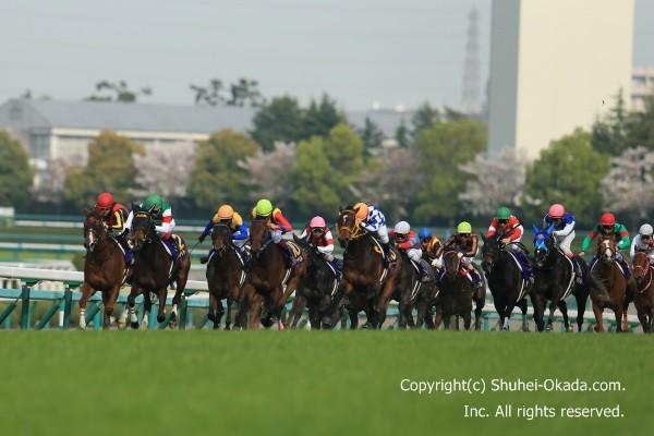 16桜花賞01