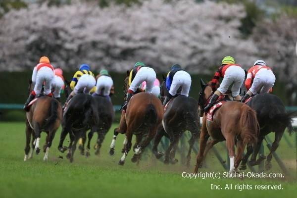 16大阪杯2