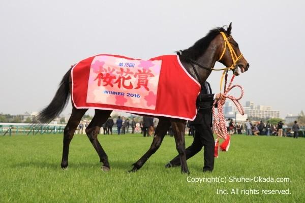 16桜花賞12