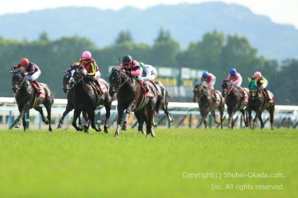 16京都新聞杯1