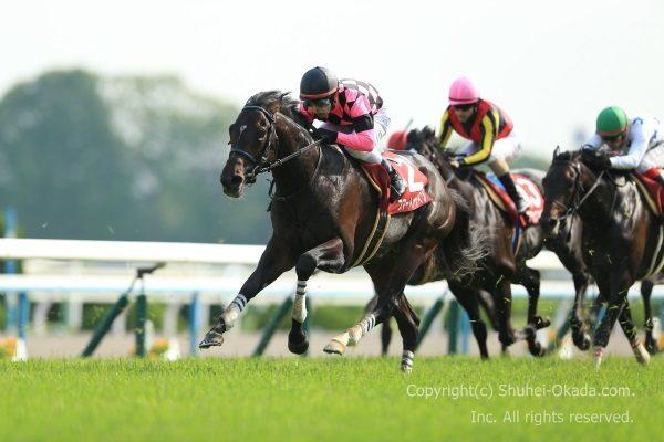 16京都新聞杯2
