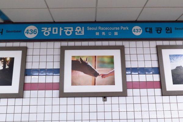 ソウル競馬場02