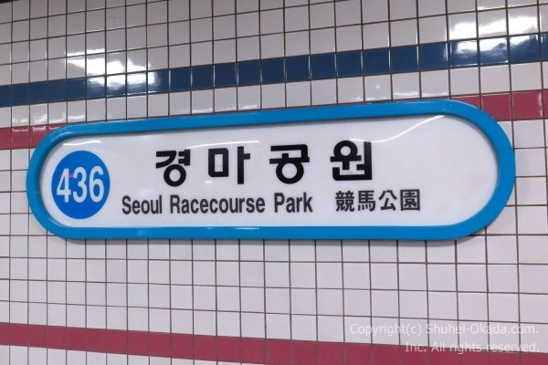 ソウル競馬場01