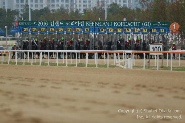 韓国カップ03