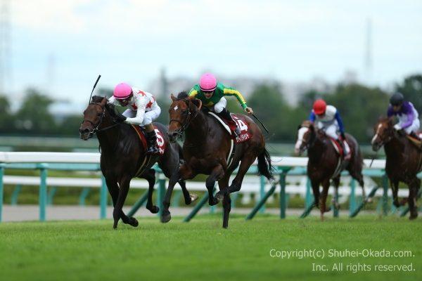 16神戸新聞杯2