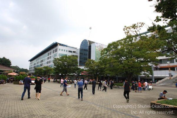 ソウル競馬場24