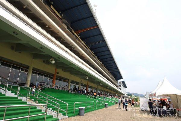 ソウル競馬場16