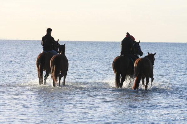 海岸調教8