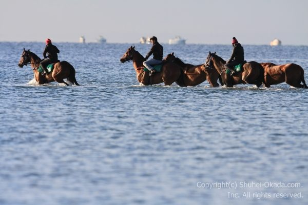 海岸調教11