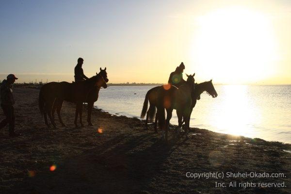海岸調教6