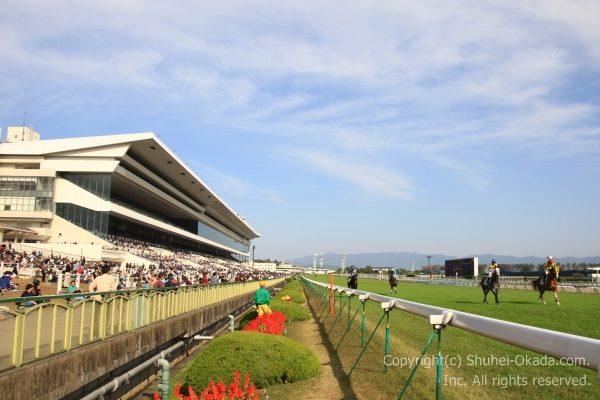 161113京都競馬場1