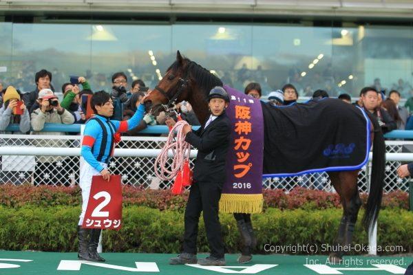 16阪神カップ7