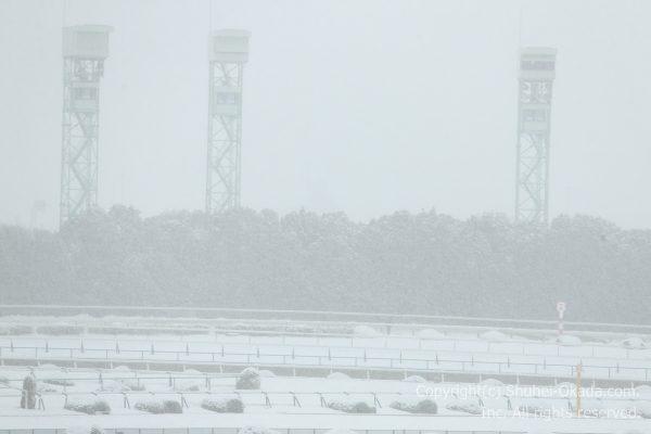 170115雪中止3