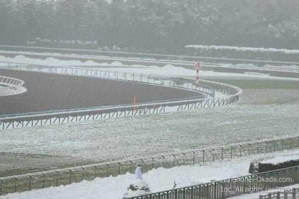 170115雪中止4