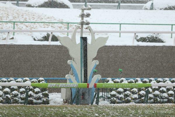 170115雪中止5