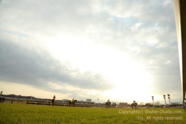 170218東京イメージ6
