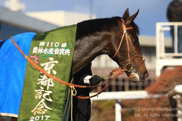 110回京都記念8