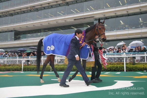 17阪神牝馬ステークス6