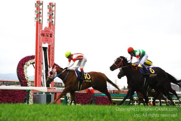 17桜花賞5