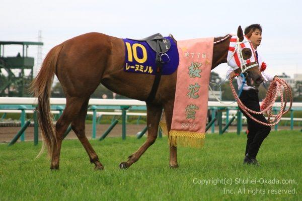 17桜花賞9