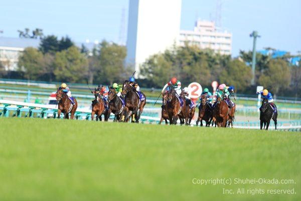 17大阪杯1