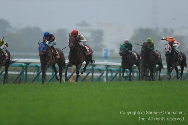 17阪神牝馬ステークス1