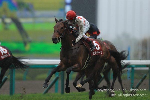 17阪神牝馬ステークス2
