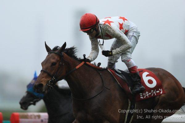 17阪神牝馬ステークス3