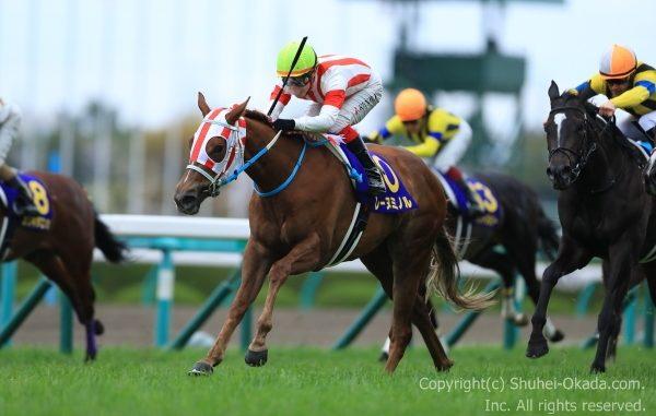 17桜花賞3