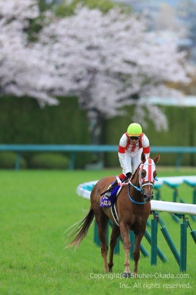 17桜花賞6
