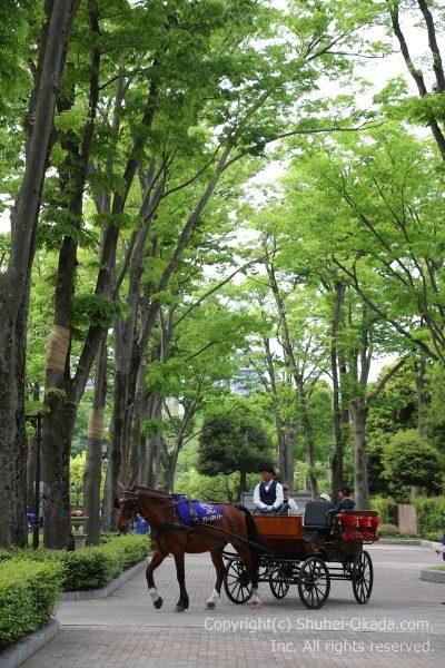 170507東京イメージ4