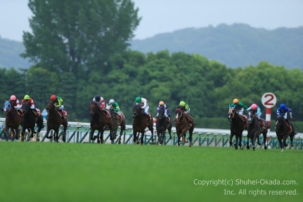 17京都新聞杯1